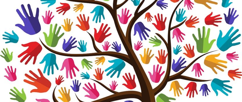 How To Cultivate a Volunteer Community