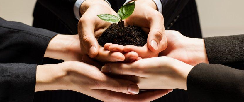 Developing Partnerships to Enhance Your Volunteer Program